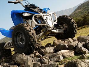 Утилитарные квадроциклы Stels ATV Dinli 700, 500, купить Динли Стелс АТВ, отзывы, тесты, цены, ремонт в компании ATV4x4